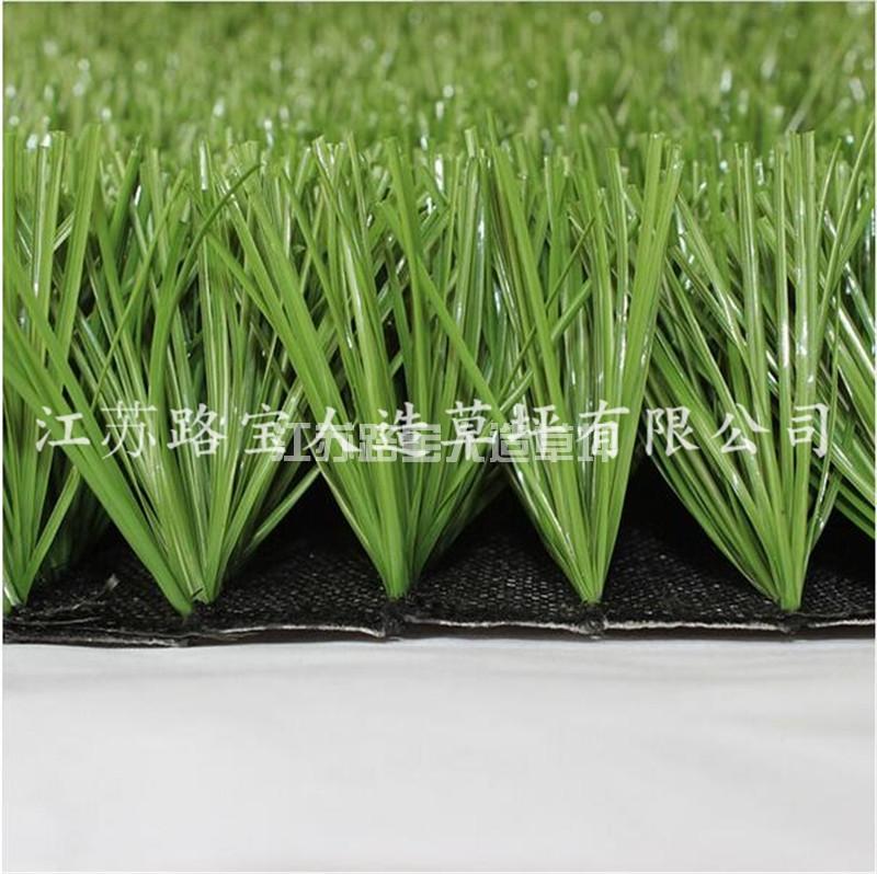 天津景观U形单茎翠绿单丝足球场草坪