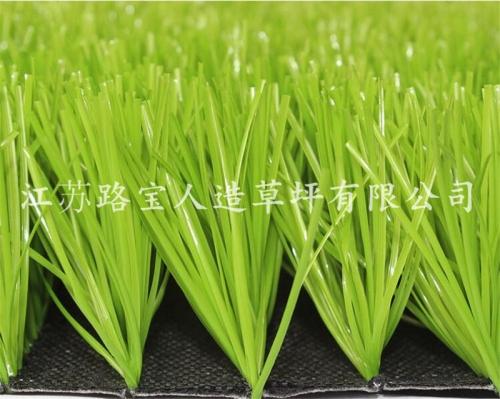 广东足球场人造休闲草坪
