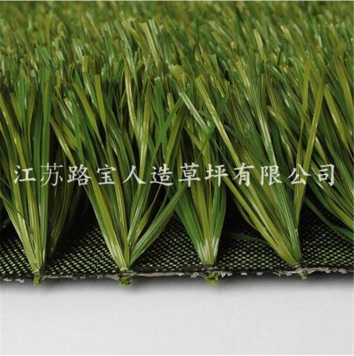 广东足球场景观人造草坪