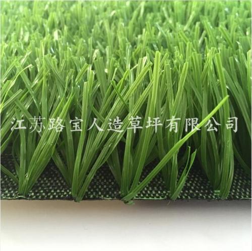 广东足球场单茎单丝草坪