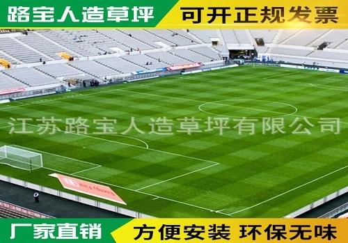 广东环保足球场人造草坪