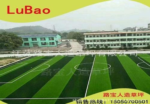 上海足球场运动仿真草坪